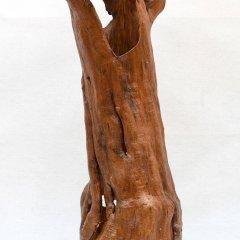 Stanhaft im Mantel, 202, Apfelbaum