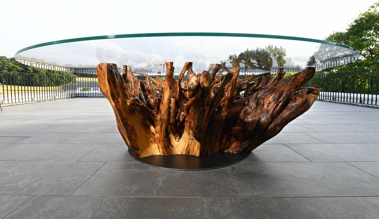 Eichenwurzel, Glasplatte mit 252 cm incl Beleuchtung - Auftrag